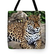 Leopard At Rest Tote Bag