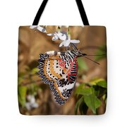 Leopard Lacewing Butterfly Dthu619 Tote Bag