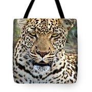 Wild Leopard In Botswana Tote Bag