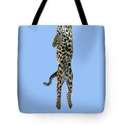 Leopard Panthera Pardus Tote Bag