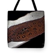 Leopard Patterned Sting Ray Fish Art Prints Tote Bag
