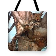 Leopard Up A Tree Tote Bag