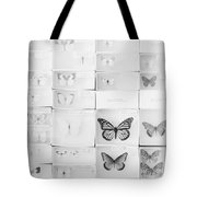 Lepidopterology Tote Bag
