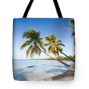 Les Salines Beach Tote Bag