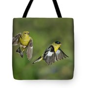 Lesser Goldfinch Pair In Flight Tote Bag