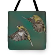 Lesser Goldfinch Pair In The Air Tote Bag