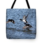 Lesser Scaup Ducks Tote Bag