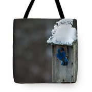 Let Me In Its Cold Tote Bag