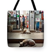 Let Sleeping Dogs Lie Where They May Tote Bag
