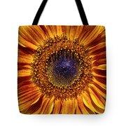 Let The Sun Shine In Tote Bag