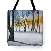 Letchworth State Park Ny Tote Bag
