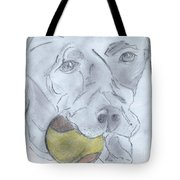 Let's Play Ball Tote Bag
