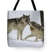 Lets Play... Tote Bag