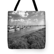 Let's Raise The Sails Tote Bag