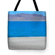 Let's Take A Picture Tote Bag