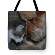 Lets Talk Tote Bag