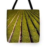 Lettuce Farming Tote Bag