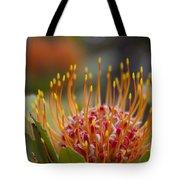 Leucospermum Pincushion Protea - Tropical Sunburst Tote Bag