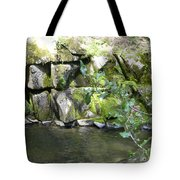 Lewis Creek Trail Tote Bag