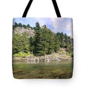Lewis River Landscape Tote Bag