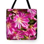 Lewisia Cotyledon Flowers Tote Bag