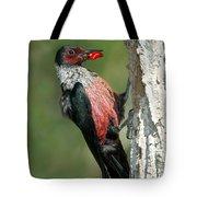Lewiss Woodpecker With Fruit In Beak Tote Bag