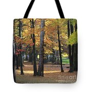 Lexington Park Tote Bag