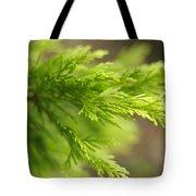 Leyland Cypress Golconda Tote Bag