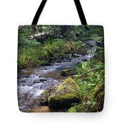Liberty Creek 2014 #3 Tote Bag