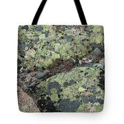 Lichen And Granite Img 6187 Tote Bag