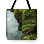 Lichen Covered Rocks With Stream In Oregon Tote Bag