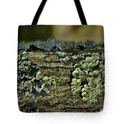 Lichen Macro I Tote Bag