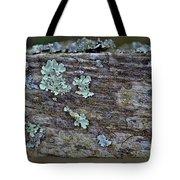 Lichen Macro II Tote Bag
