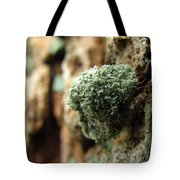 Lichen Mimic Tote Bag