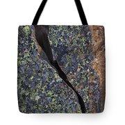 Lichen On Granite Tote Bag by Heiko Koehrer-Wagner