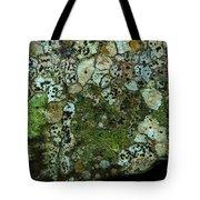 Lichen On Rock In Suck Creek Tote Bag