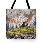 Lichen On Sea Beach Rock Tote Bag