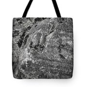 Lichen On The Whistlers - Black And White Tote Bag