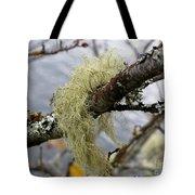Lichen On Tree Tote Bag