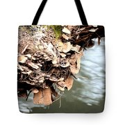 Lichens Abstract 2013 Tote Bag
