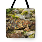 Lichens And Moss In Glen Strathfarrar Tote Bag