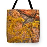 Lichens On The Shoreline Rocks 2 Tote Bag