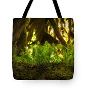 Licorice Fern Tote Bag