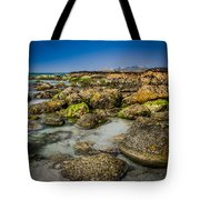 Life Clings As The Tides Ebb Tote Bag