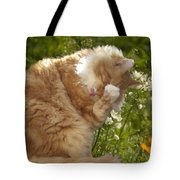 Life Is Tasty  Tote Bag