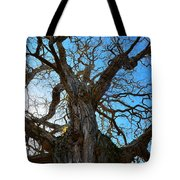 Life Of A Tree Tote Bag