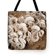 Life On The Rocks In Sepia Tote Bag