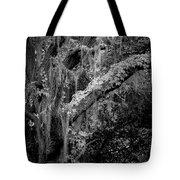 Life Remains Tote Bag