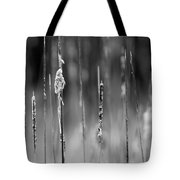 Life's Ripple - Center Tote Bag by Steven Santamour