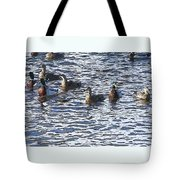Life's Song Tote Bag